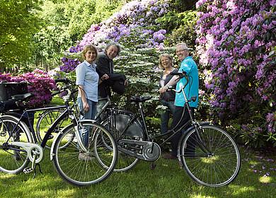 Eine Radfahrergruppe vor blühenden Rhododendronbüschen in Westerstede