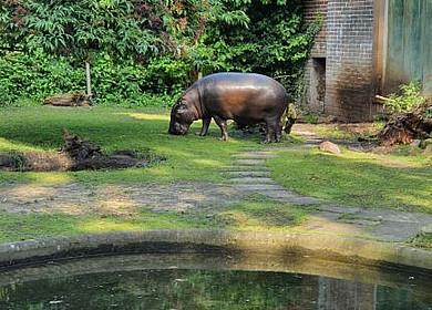 Tier- und Freizeitpark Jaderpark
